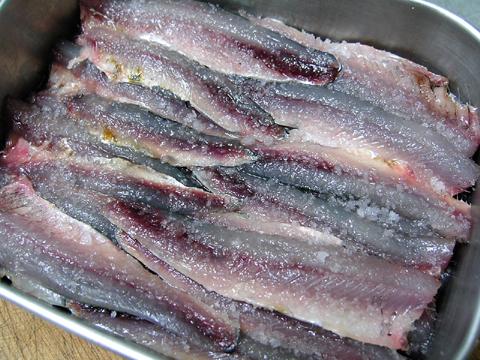 anchovy3.jpg